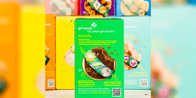 A Girl Scout troop in Christianburg used the Google drone delivery company Wing to deliver the cookies.