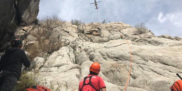 Due to the climber's injuries and location on the mountain, rescue officials decided to call in a LifeFlight helicopter to airlift the man to safety.