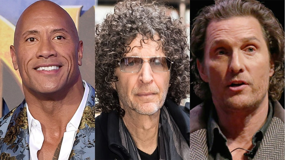 Howard Stern warns The Rock, McConaughey against starting political careers