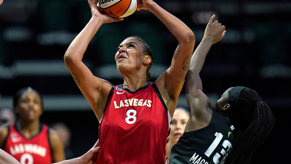 WNBA coach suspended after weight comment, player fires back: 'little White one'