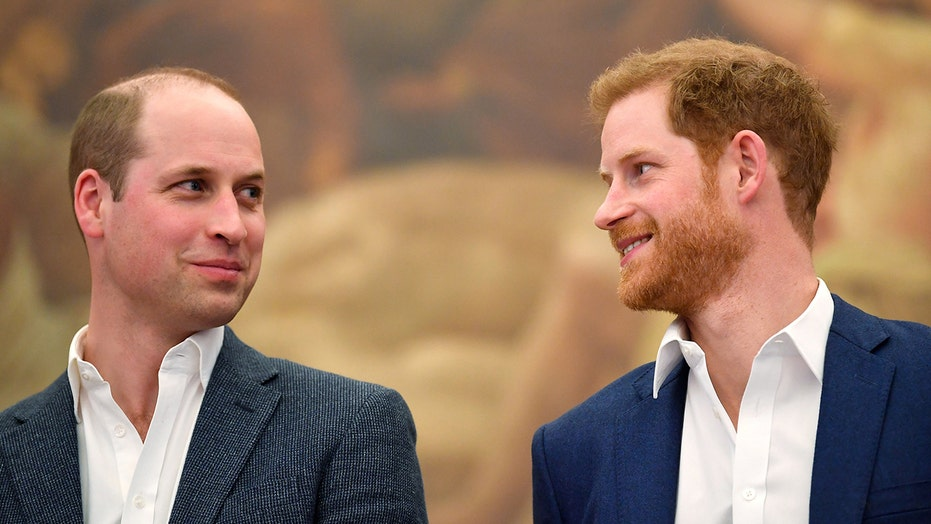 Prince Harry will 'absolutely' attend Princess Diana tribute with Prince William: report