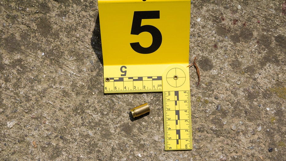 Chicago weekend violence: 55 people shot, including 11-year-old girl; 5 people killed, police say