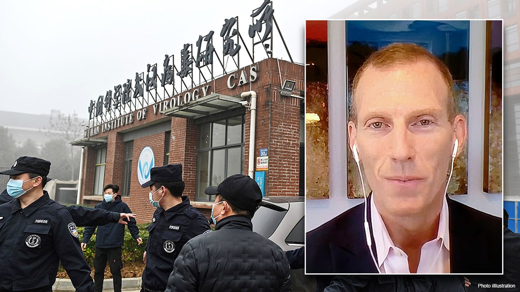 China 'destroying samples' and 'hiding records' on COVID: WHO board member
