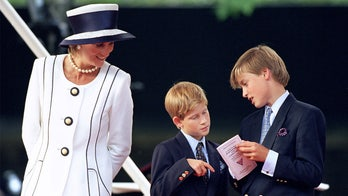 Prince William, Prince Harry 'were very hands-on' in honoring Princess Diana with 'fitting' tribute: source