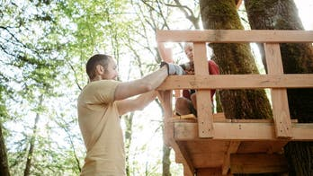 Dad rips into neighbor who reported family's tree fort to HOA: 'You're safe now'