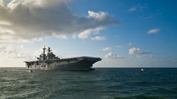 Navy budget proposes research for 'bio-inspired' sea-air vessels, platforms, robots: report