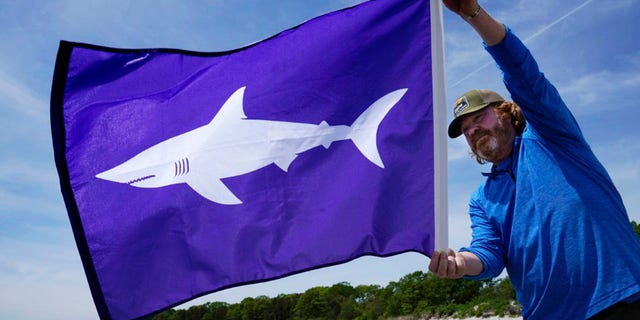 Jim Britt, communications director with the Maine Dept. of Agriculture, Conservation and Forestry, holds a new flag that will fly if sharks are detected near Maine beaches, Tuesday, June 1, 2021, at Crescent Beach in Cape Elizabeth, Maine. Last summer Maine had its first documented fatal shark attack. Credit: AP Photo/Robert F. Bukaty