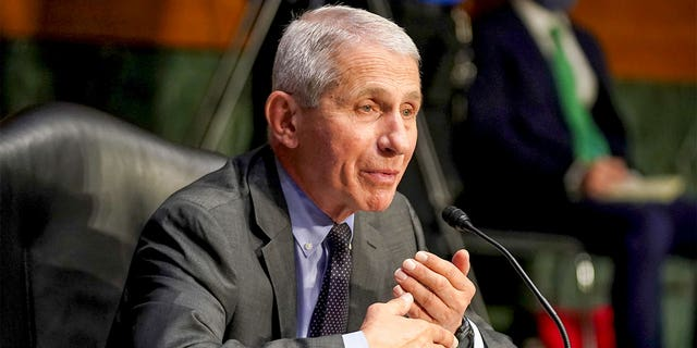 Dr. Anthony Fauci, director of the National Institute of Allergy and Infectious Diseases, arrives for a Senate Health, Education, Labor and Pensions Committee hearing to discuss the ongoing federal response to COVID-19 on May 11, 2021, in Washington, D.C. Fauci will testify before that committee again on Tuesday. (Greg Nash-Pool/Getty Images)