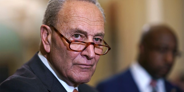 Senate Majority Leader Chuck Schumer, D-N.Y., meets with reporters before a key test vote on the For the People Act, a sweeping bill that would overhaul the election system and voting rights, at the Capitol in Washington, Tuesday, June 22, 2021. (AP Photo/J. Scott Applewhite)