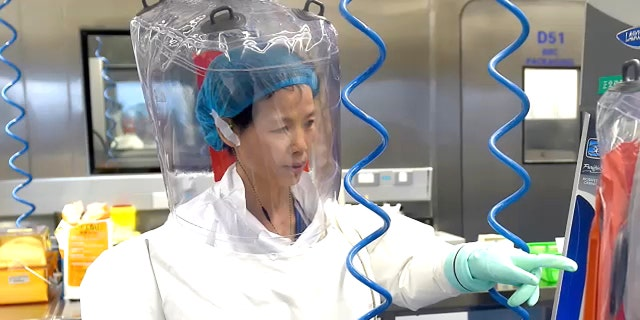 Dr. Shi Zhengli, known as the Wuhan Institute 'Bat Lady' reportedly worked with military officials at the lab, despite denying it. (APTN)