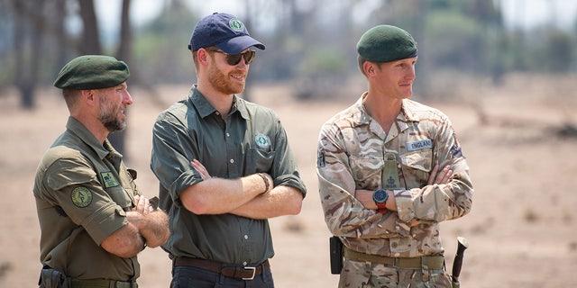 ハリー王子, Duke of Sussex watches an anti-poaching demonstration exercise conducted jointly by local rangers and UK military deployed on Operation CORDED at the Liwonde National Park during the royal tour of Africa on September 30, 2019, in Malawi.