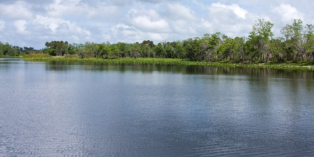 The environmentally sensitive St Johns River flows northward from Indian River County near the east coast of Florida, through Central Florida and eventually to Jacksonville. (iStock)