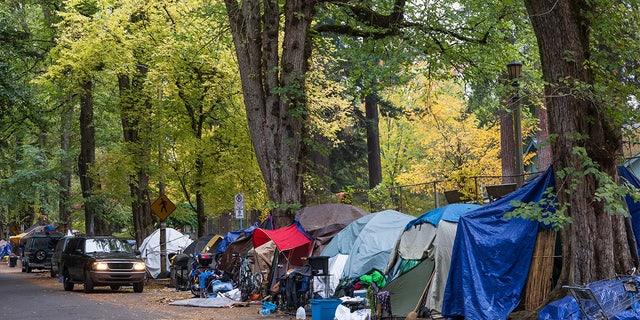 A large homeless camp at Laurelhurst Park in Portland, Oregon. Laurelhurst Park is at the center of one of Portland's most affluent neighborhoods. Photo taken on 10-29-2020