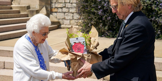 Britain's Queen Elizabeth II receives a Duke of Edinburgh rose, given to her by Keith Weed, President of the Royal Horticultural Society, at Windsor Castle, 영국, Wednesday June 9, 2021. The newly bred deep pink commemorative rose has officially been named in memory of the late Prince Philip Duke of Edinburgh. A royalty from the sale of each rose will go to The Duke of Edinburgh's Award Living Legacy Fund to support young people taking part in the Duke of Edinburgh Award scheme.