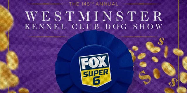 How to win $1,000 for free on the Westminster Kennel Club Dog Show on Sunday