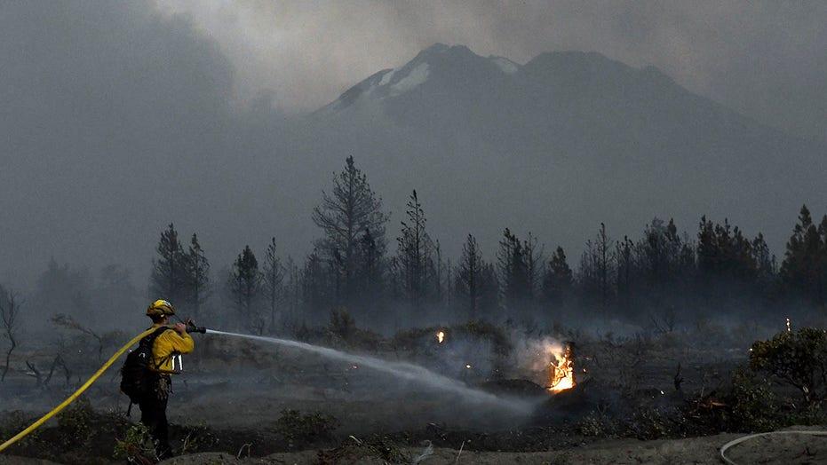 Police shoot, kill California man near marijuana farms evacuated by fire