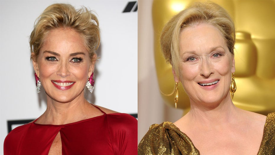 Sharon Stone slammed Meryl Streep's icon status in resurfaced interview: Others 'equally as talented'