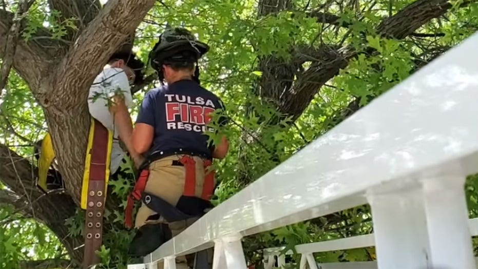 Cat owner gets stuck in tree trying to rescue pet in Oklahoma