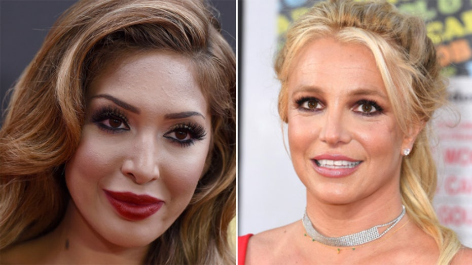 Farrah Abraham condemns Britney Spears' past mistreatment as young mom in public eye: 'She was targeted'