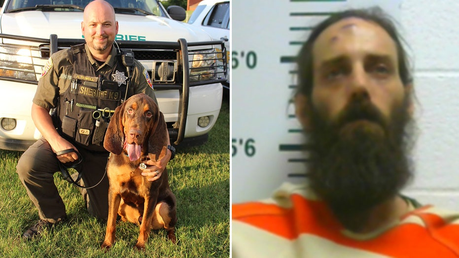 Tennessee sheriff's bloodhound helps find missing 6-year-old girl allegedly abducted by father
