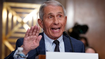 Fauci slammed for claiming it's 'too soon' to consider Christmas gatherings