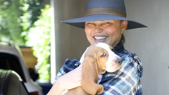 Chrissy Teigen steps out in public with new basset hound puppy after death of dog Pippa