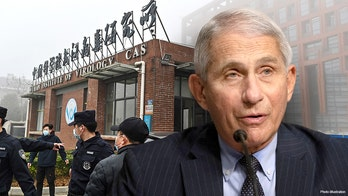 New Wuhan COVID docs 'completely contradict Fauci' on gain-of-function claims, ex-State Dept official says