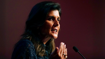 Nikki Haley slams critical race theory, says America should not be 'divided by different shades of color'