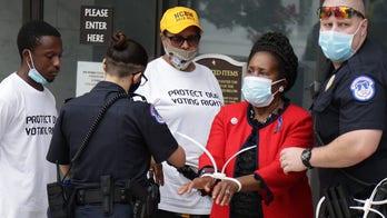 Rep. Sheila Jackson Lee, Texas Democrat, arrested during DC protest