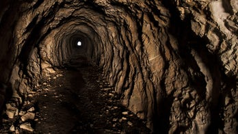Mysterious, bat-filled tunnels found under newly bought house