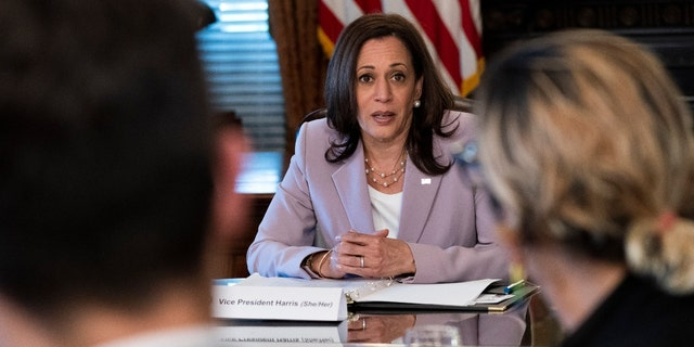 Vice President Kamala Harrismeets with LGBTQ stakeholders, Wednesday, June 23, 2021, in her ceremonial office on the White House complex in Washington. (AP Photo/Jacquelyn Martin)