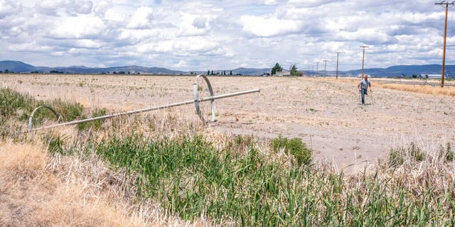 Ben DuVal walks past a dry irrigation pipe in a field he had rented for crops this year but was unable to plant due to the water shortage, on Wednesday, June 9, 2021, in Tulelake, Calif.