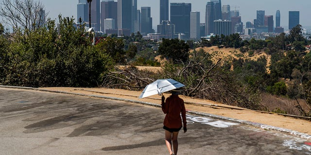 Athlete Sam Richardson uses a UV-Blocking Sun protection umbrella while speed-walking in Elysian Park in Los Angeles Wednesday, July 7, 2021. High heat and record temperatures are expected across the West this weekend. In California's Death Valley, about 150 miles west of Las Vegas, temperatures could reach 130 (54 C). Forecasters warned that much of California will see dangerously hot weekend weather, with highs in triple digits in the Central Valley, mountains, deserts and other inland areas because of strengthening high pressure over the state. Heat warnings did not include major coastal populations. (AP Photo/Damian Dovarganes)