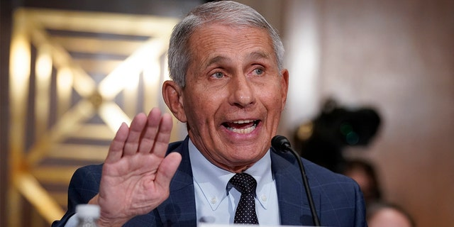 Dr. Anthony Fauci was accused of constant flip flopping in a lengthy Twitter thread. (AP Photo/J. Scott Applewhite, Pool)