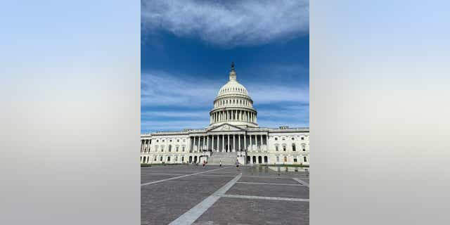 Public members began walking around the Capitol grounds after being barricaded for several months after the January 6 uprising.  (Kelly Laco / Fox News)