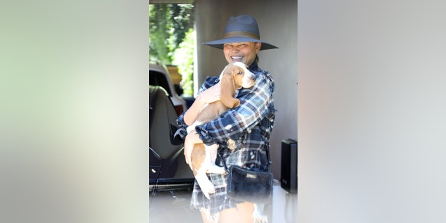 Chrissy Teigen brings her new basset hound puppy, Pearl, along for a visit to her office in Santa Monica.