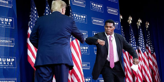 President Trump is greeted by Pro Football Hall of Fame member Herschel Walker during an event for Black supporters at the Cobb Galleria Centre Sept. 25, 2020, in Atlanta, Ga. (Photo by Brendan Smialowski / AFP) (Photo by BRENDAN SMIALOWSKI/AFP via Getty Images)