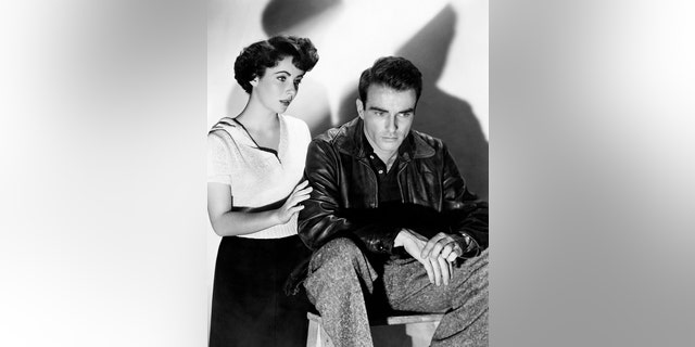 Charles Casillo said that Elizabeth Taylor was immediately attracted to Montgomery Clift but he was