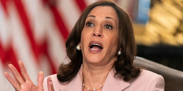 Vice President Kamala Harris speaks during a roundtable with disabilities advocates on voting rights in the Vice President's Ceremonial Office at the Eisenhower Executive Office Building on the White House complex, Wednesday, July 14, 2021, in Washington. (AP Photo/Manuel Balce Ceneta)