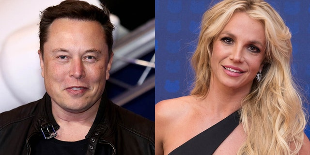 Elon Musk tweeted his support for Britney Spears amid her guardianship battle.