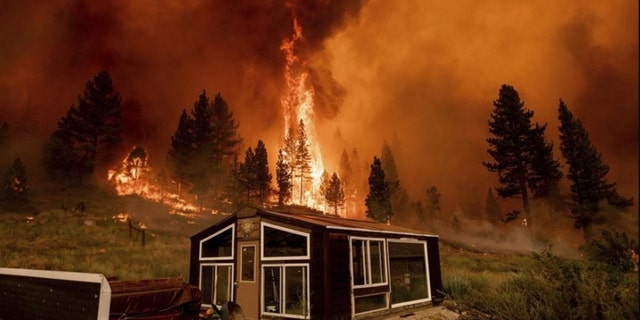 The Tamarack Fire, which was sparked by lightning on July 4, exploded overnight and was over 32 square miles as of Saturday evening.