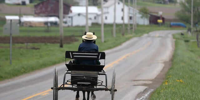 A Swartzentruber Amish buggy heads along Winter Road on Friday, April 21, 2017, in West Salem, Ohio. Members of the Swartzentruber Amish group are among the most conservative in the U.S. (Phil Masturzo/Akron Beacon Journal via AP)