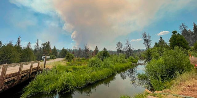 In this photo provided by the Bootleg Fire Incident Command, the Bootleg Fire burns in the background behind the Sycan Marsh in southern Oregon on Saturday, July 17, 2021. (Bootleg Fire Incident Command via AP)