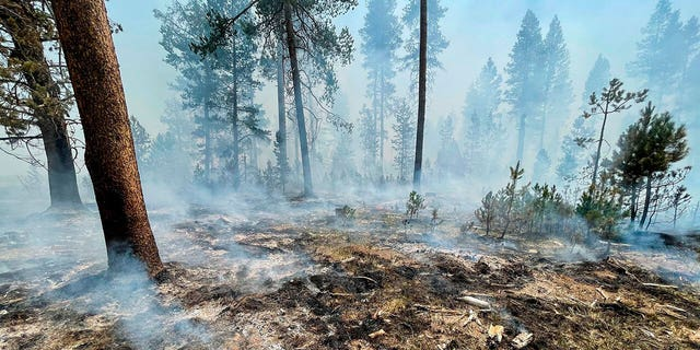 In this photo provided by the Bootleg Fire Incident Command, the Bootleg Fire is seen smoldering in southern Oregon, Saturday, July 17, 2021. (Bootleg Fire Incident Command via AP)