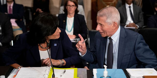 Dr. Anthony Fauci, director of the National Institute of Allergy and Infectious Diseases, speaks to Rochelle Walensky, Director of the Centers for Disease Control and Prevention, before the Senate Health, Education, Labor, and Pensions Committee hearing on Capitol Hill in Washington, on July 20, 2021. (Photo by Stefani Reynolds / POOL / AFP) (Photo by STEFANI REYNOLDS/POOL/AFP via Getty Images)