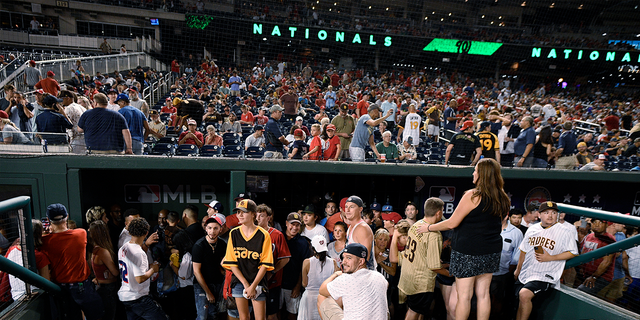 Fans are seen in the National Park after Saturday's game was delayed after gunshots.  (The Associated Press)