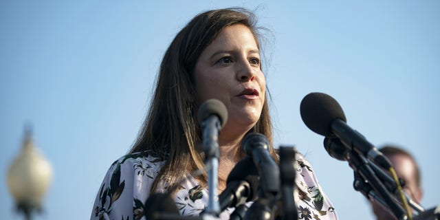 Rep. Elise Stefanik introduced a bill to block and deport migrants with sex crime convictions