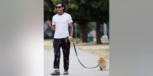 Gavin Rossdale walks his dog after his ex-wife, Gwen Stefani, married Blake Shelton on July 3.