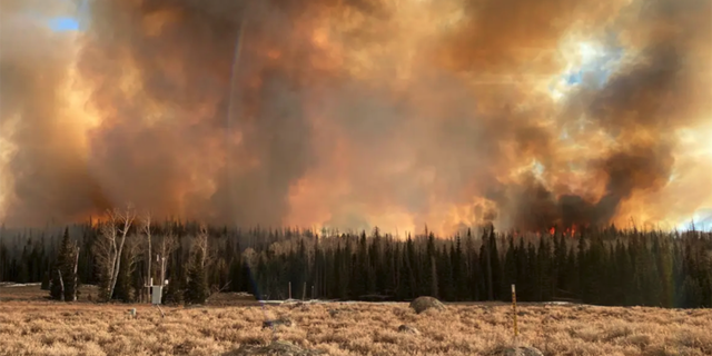 Wildfire smoke may greatly increase susceptibility to SARS-CoV-2, the virus that causes COVID-19, according to new research from the Center for Genomic Medicine at the Desert Research Institute, Washoe County Health District, and Renown Health in Reno, Nev.