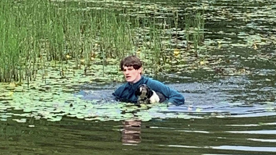 Vacationer rescues dog from drowning while visiting lake with girlfriend and her mom